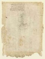 107v_Anatomical_Studies_19104r_107v