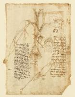 109r_Anatomical_Studies_19114v_109r