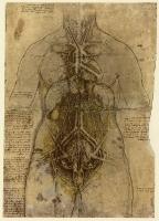 122r_Anatomical_Studies_12281r_122r