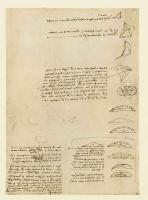 128v_Anatomical_Studies_19145r_128v