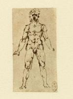132r_Anatomical_Studies_12721r_132r