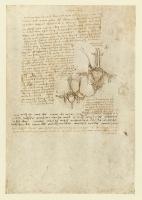 153r_Anatomical_Studies_19060r_153r