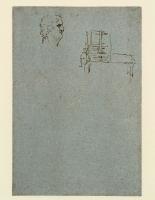 182v_Anatomical_Studies_19091v_182v