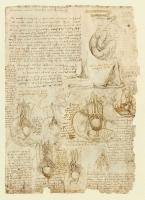 197r_Anatomical_Studies_19101v_197r