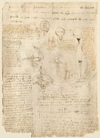 198v_Anatomical_Studies_19102v_198v
