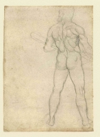 046v_Anatomical_Studies_19043v_046v