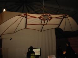Модель летающей машины - по чертежам Леонардо да Винчи (планер)